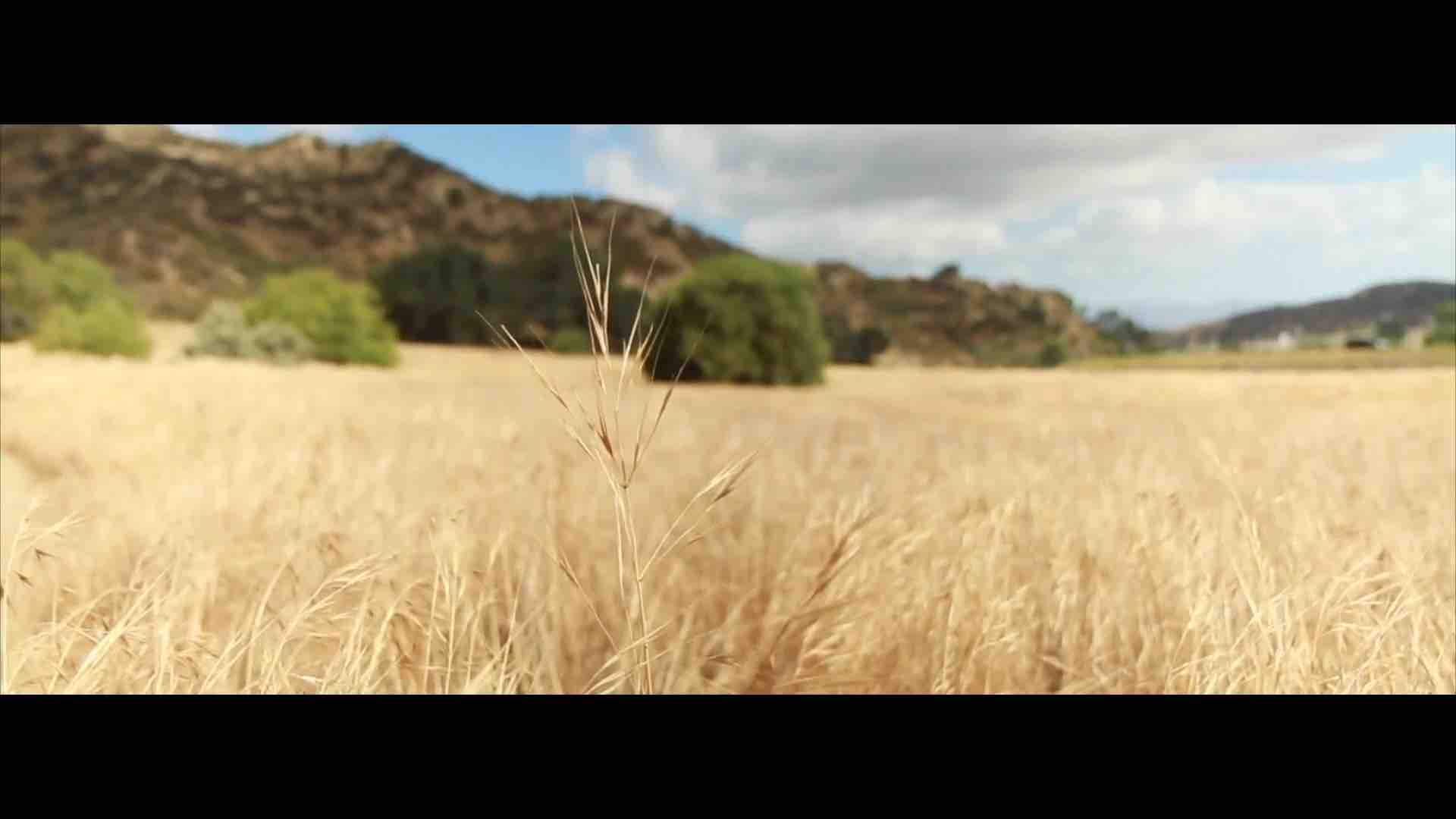 Cinematography & Editing Reel – Up to Mid. 2017